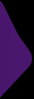 home-banner-left-purple